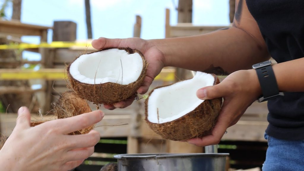 Maui activities Kahana Beach Resort husk a coconut